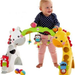 Fisher-Price Newborn to Toddler Play Gym Price & Review